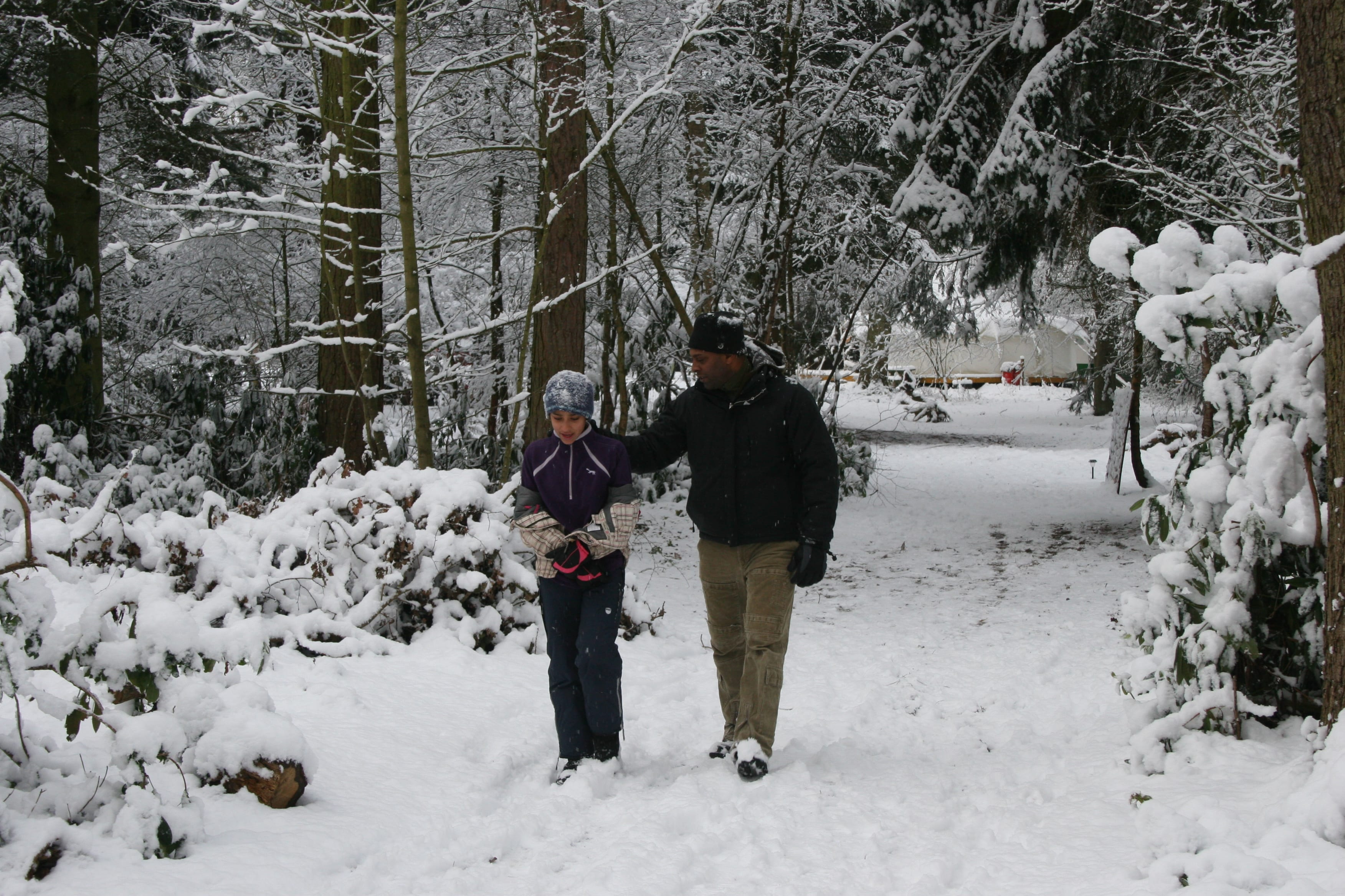 Two people walking on a woodland path covered in snow