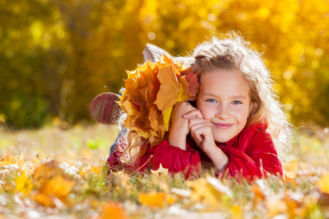 A child holding a bundle of autumn leaves in a field